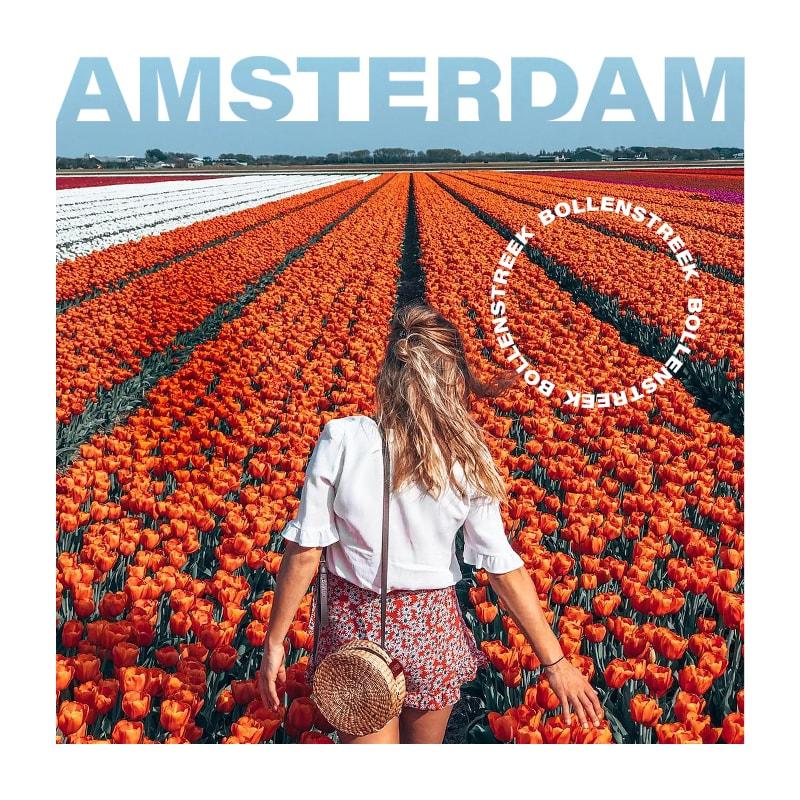 Amsterdam'daki Bollenstreek