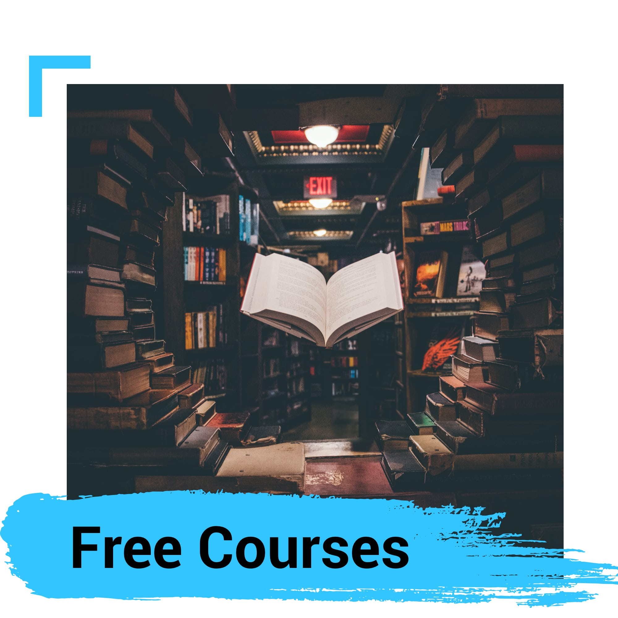 Free Courses from Universities