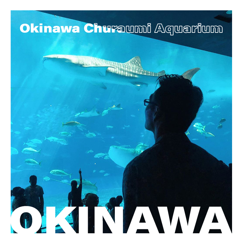 Churaumi Aquarium in Okinawa