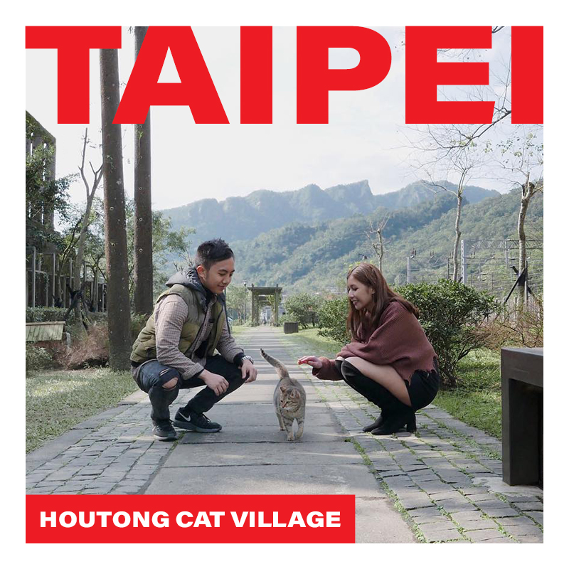 Cat Village in Taipei